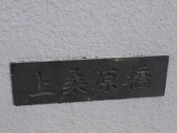 9182.JPG