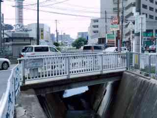 糸田川とその支流に架かる橋8 糸...